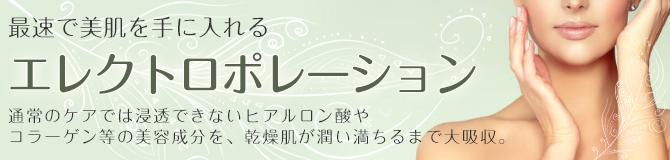 エレクトロポレーション│00分0,000円